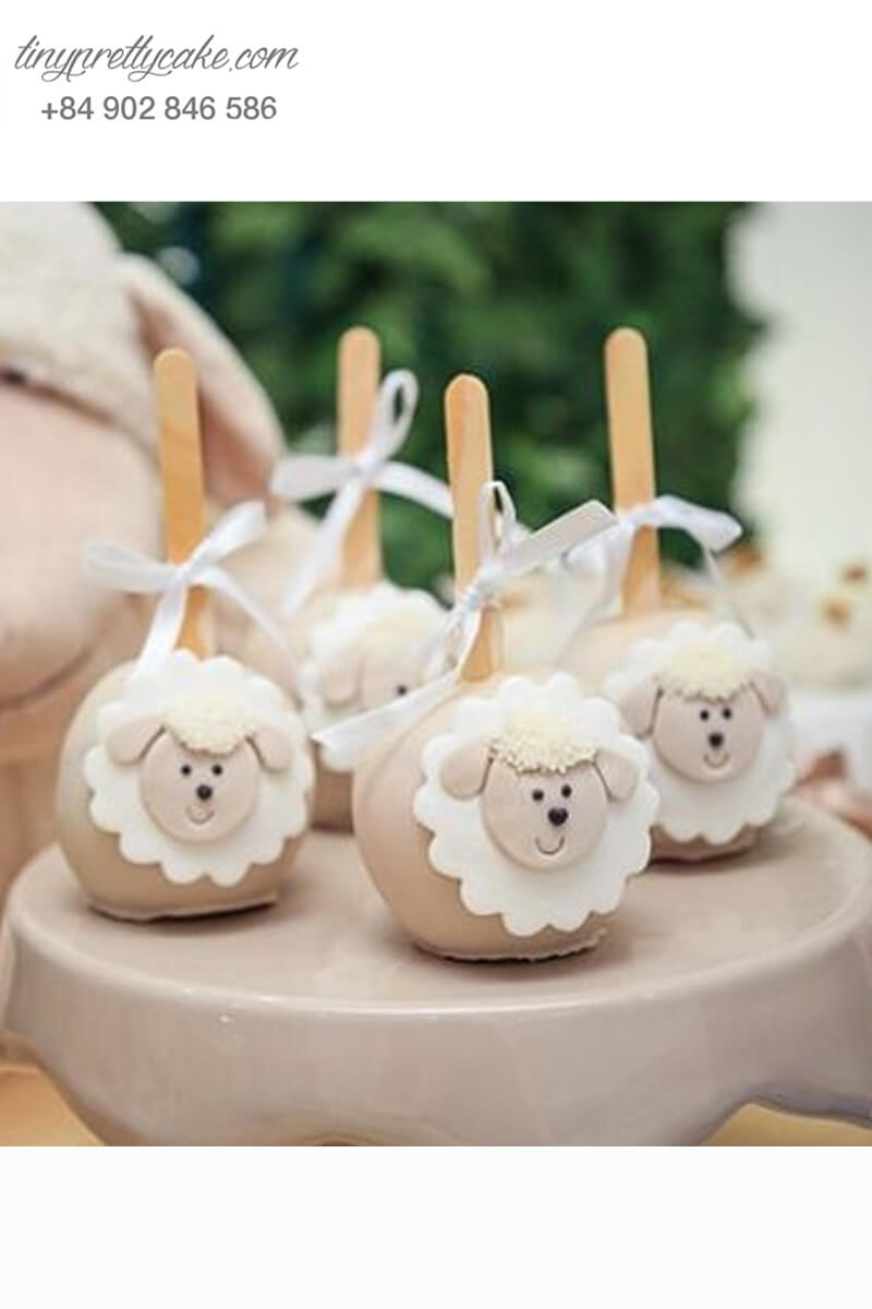 Bánh cakepop những chú cừu con ngây ngô dễ thương dành tặng các bé ngày sinh nhật