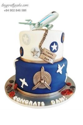 bánh sinh nhật 2 tầng hình máy bay